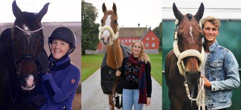 Ny namntung trio bakom dressyrsatsning under Jönköping Horse Show!