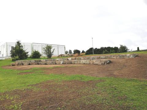 Granitblock får nytt liv i Möllers mosse