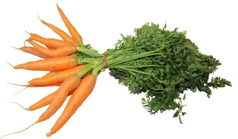 Carotenoids Market 2019 Trends, Market Share, Industry Size, Opportunities, Analysis and Forecast To 2027