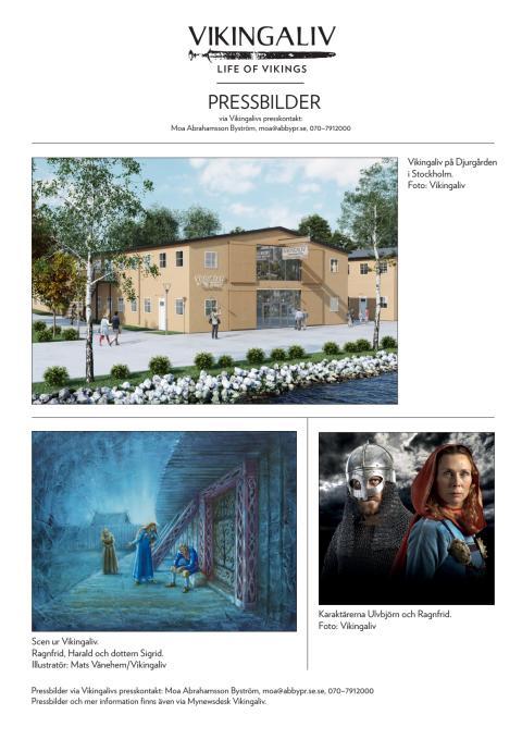 Pressbilder Vikingaliv november 2016