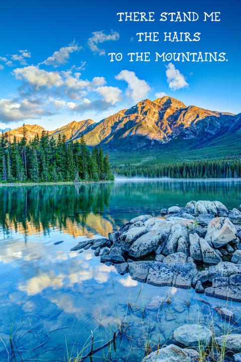 """Your English is under all pig? Der Gewinn einer zweiwöchigen Schülersprachreise nach Kanada kann Abhilfe schaffen! – Große """"Denglisch""""-Aktion zum 150. Geburtstag von Kanada"""