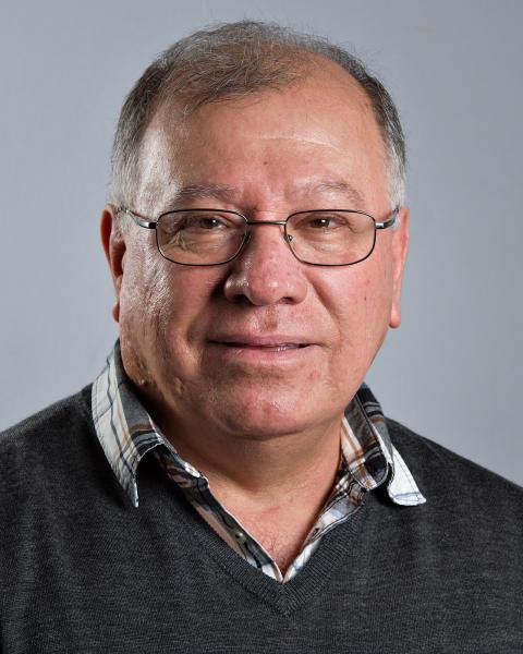 Almaz Abdulla (S)