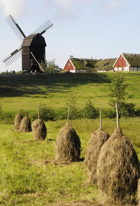 Säsongsavslutning på Kulturens Östarp