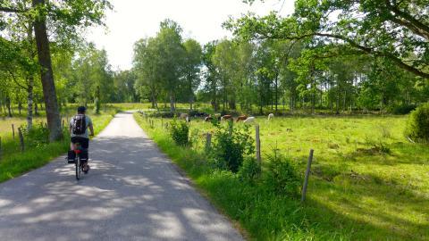 Ferie og frihed fra sadlen, ny cykelrute indvies 17. juni