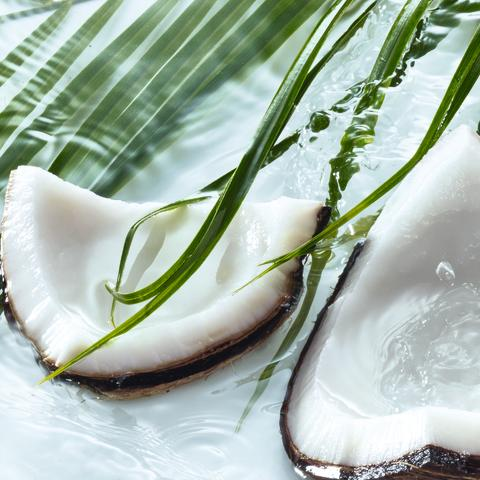 Les Plaisirs Nature Sensual Coconut