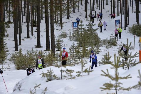 Vasaloppets vintervecka 2016 startade med Kortvasan 2016-02-26