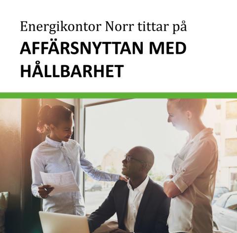 Omvärldsanalys – Energikontor Norr tittar på affärsnyttan med hållbarhet