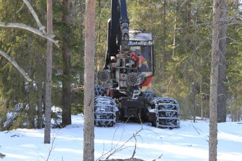 Skogsmaskin som kan användas vid hyggesfritt skogsbruk