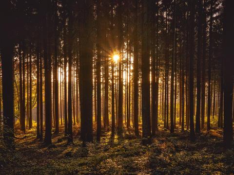 5 vackra resmål i Skåne