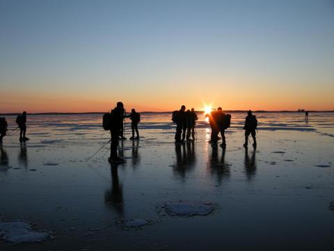 Vikingarännet lockar de nyaste i Sverige