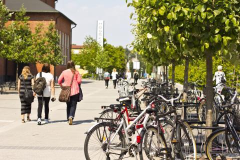 """""""Ett grönt och hållbart campus"""""""