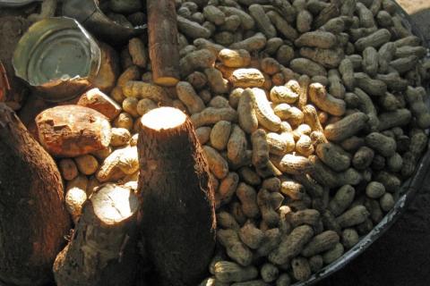 Maniok (Kassava) och jordnötter. Fotograf: Sanbasan, Mostphotos