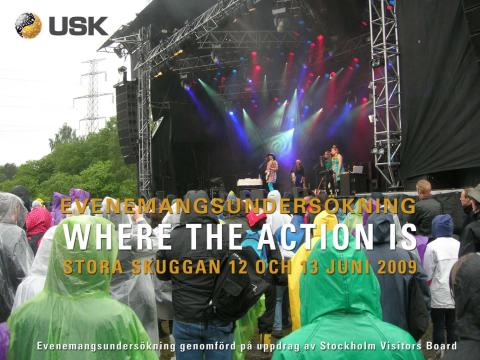 Rapport: Musikfestivalen Where The Action Is 2009