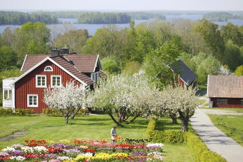 Utsikt över sjön Åsnen