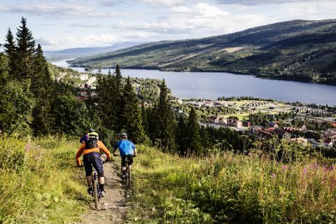 SkiStar Åre: Åre Mountain Festival – ny alpin sommarfestival