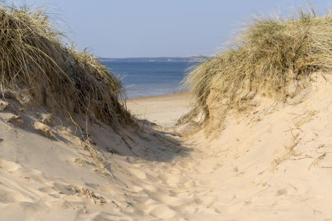 Badsugen? Halmstad har 45 km strand!