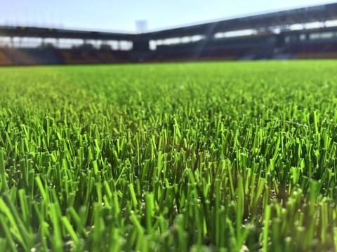 Artificial Turf for Right to Dream Park, Denmark