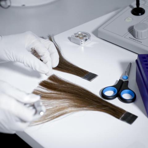 Hair Science