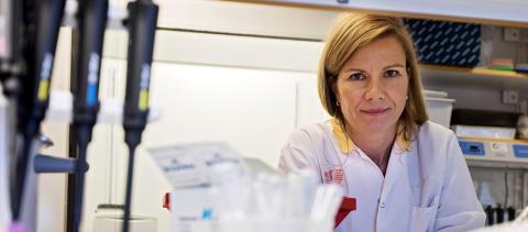 Njurfonden bidrar till livsviktig forskning
