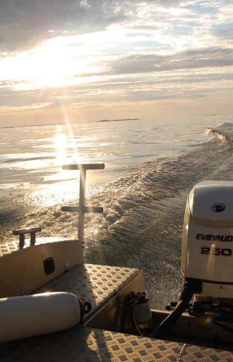 Alukin väljer Svedea Båtförsäkring som försäkringspartner
