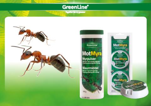 GreenLines serie MotMyra!