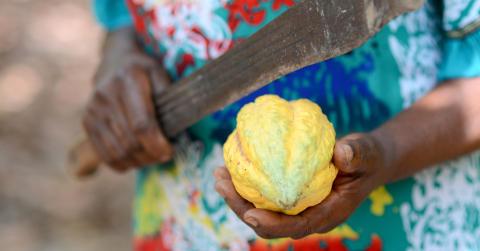 Ohållbart låga inkomster i de globala leverantörskedjorna, visar ny rapport