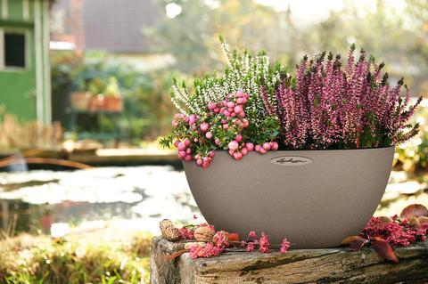Bunter Herbst-Garten mit LECHUZA