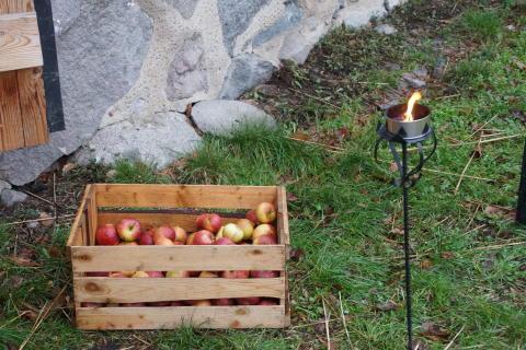 Pressinbjudan: Välkommen till invigningen av årets äppeltavla på Tärnan