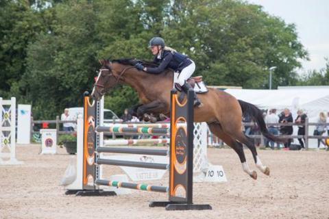 Från Landslagsryttare till små ponnyryttare tävlar under årets hästsportvecka i Malmö