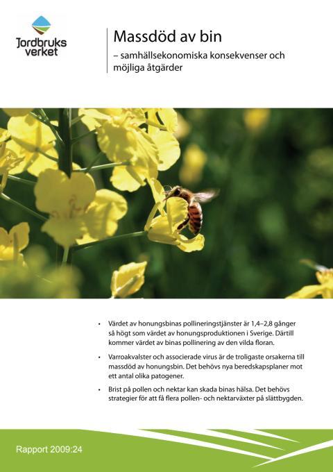Fakta om bin, honung och biodling