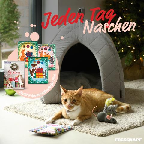Advent, Advent – aber bitte nicht, dass das Haustier es verpennt!