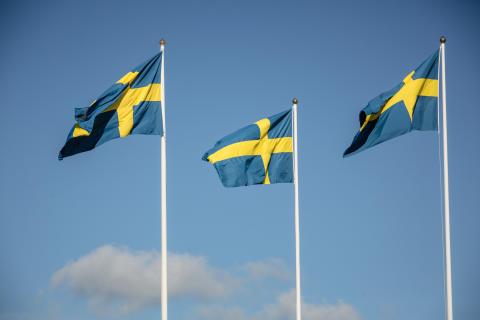 Barnens Dag och nationaldag på Tjolöholm