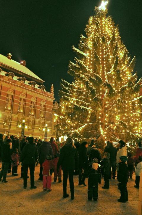 Traditionell Julgransplundring