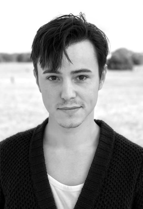 David Arnesen, Skådespeleri