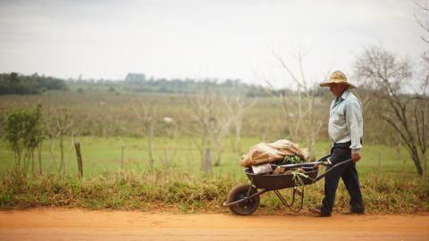 Farmer in Paraguay