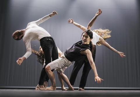 Dansresursen - en fullmatad sida om dansfältet