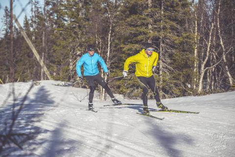 Vejen mod Vasaløbet i Sverige