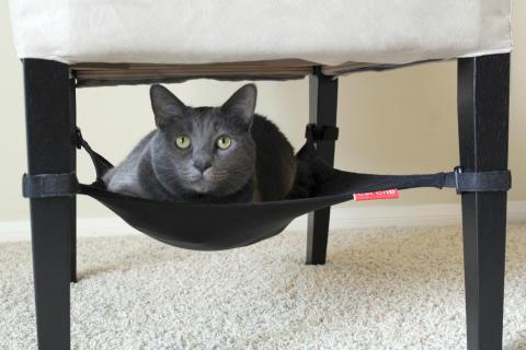 Cat Crib Kattbädd