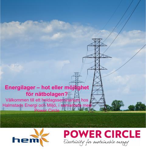 Energilager - hot eller möjlighet för nätbolagen?