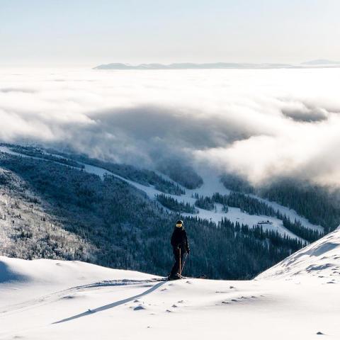 Distansstudier med drömmar, disciplin och alpina VM