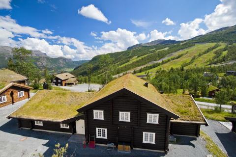Sommerferie i Hemsedal
