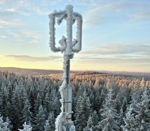Skogens förmåga att dämpa klimatförändringen ifrågasätts