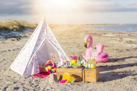 Nille - piknik på stranda