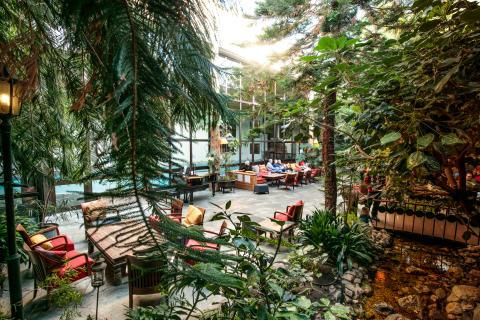 Den unika Vinterträdgården på Storhogna Högfjällshotell & Spa i Vemdalen fyller 30 år!