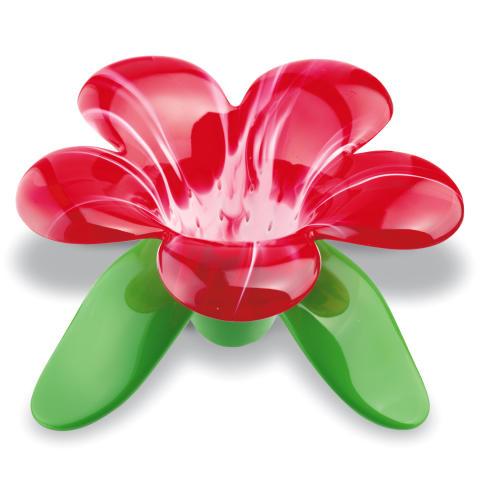 Tesil blomma - Audrey, röd / vit