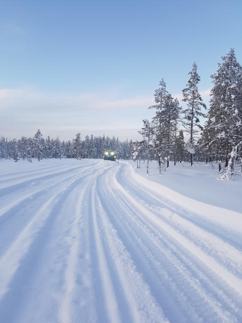 Natursnö i Vasaloppsarenan  11 januari 2018