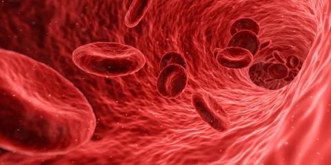 Blodfettsprofil förbättrar riskbedömning av typ 2-diabetes