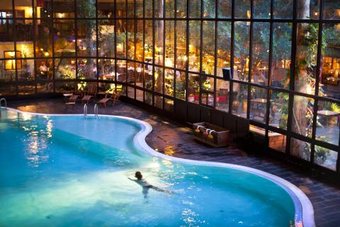 Storhogna Högfjällshotell & Spas pool mot Vinterträdgården