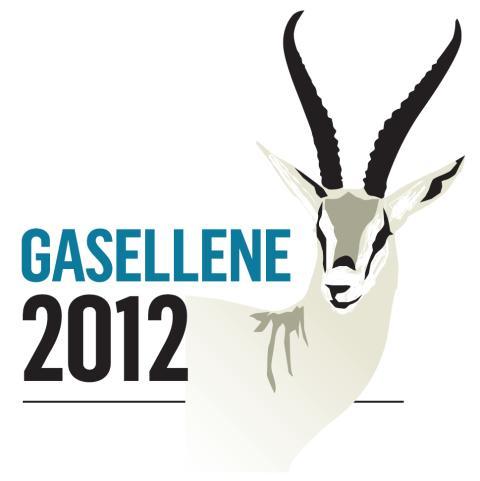 DIBS på årets Gaselleliste!