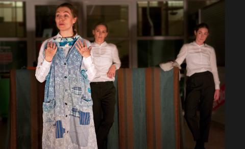 Region Blekinges kulturpris 2014 går till artistgruppen Pinamackorna